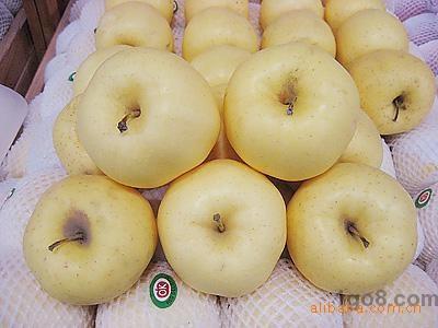 绿色无公害优质金帅苹果(图)服务质量一流