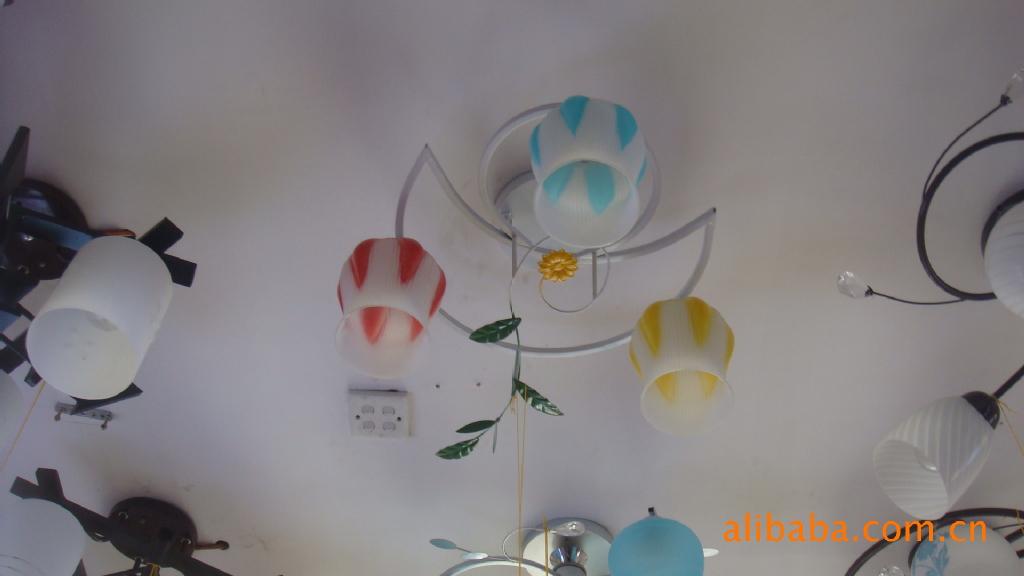 ...灯具 专业铁艺架子灯 各种款式.花色繁多.有多种玻璃灯罩可随...