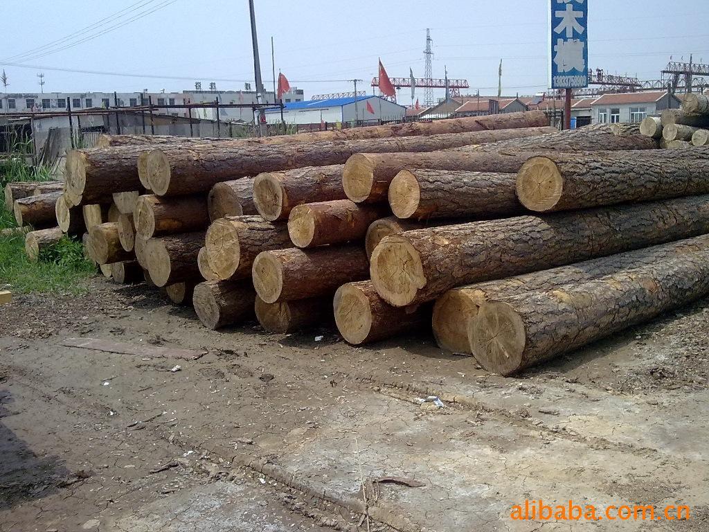大 小兴安岭木材