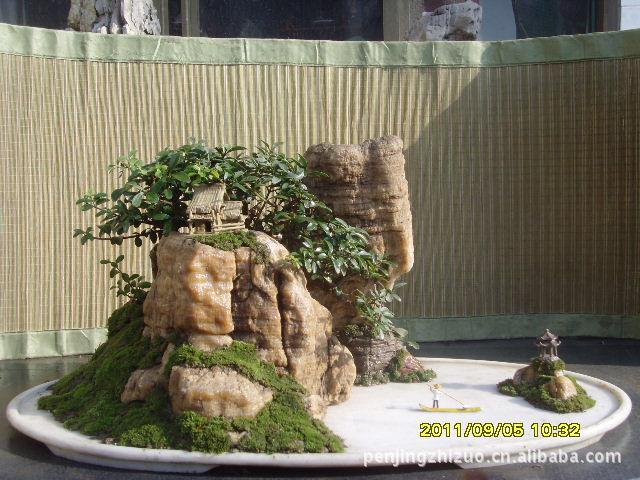 山水盆景图--- - xuke1129 - 足球书刊杂志收藏---球迷的博客