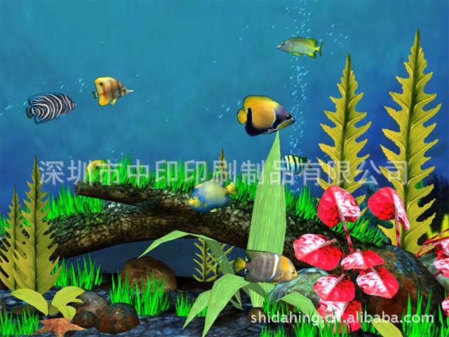 批发采购工艺画 3D立体画 工艺画 高雅装饰 海底世界系列 ...