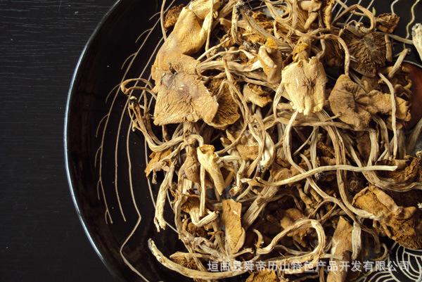【精品推荐】供应优质茶树菇