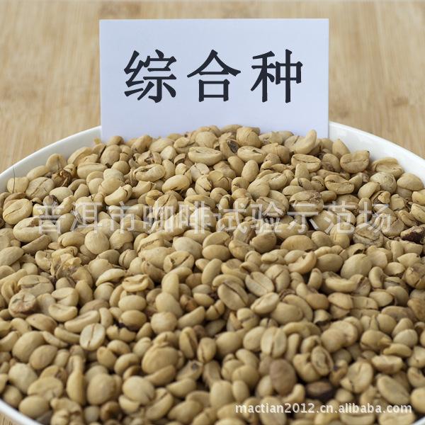 精品咖啡种子种苗批发 独家赠送《小粒种咖啡高产优质栽培技术》