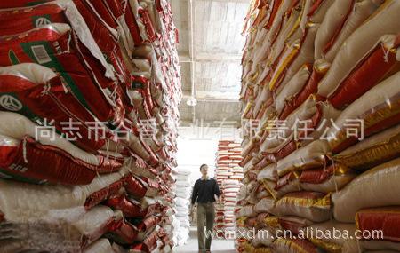 【优质供应】批发无公害的优大米 礼品大米