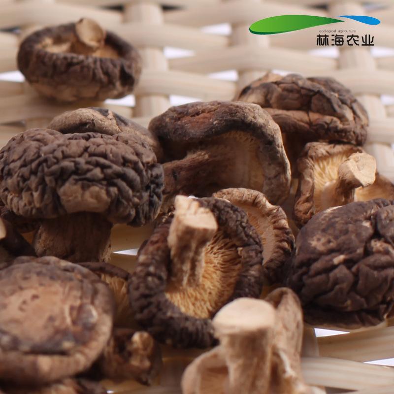浙江特产干货 遂昌农家 优质香菇干 食用菌