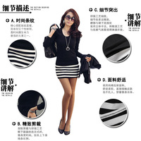 FREE SHIPPING 2012 spring and summer one-piece dress casual long-sleeve basic shirt dress ,ladies skirt