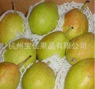 【优质直销】供应美味可口水果梨
