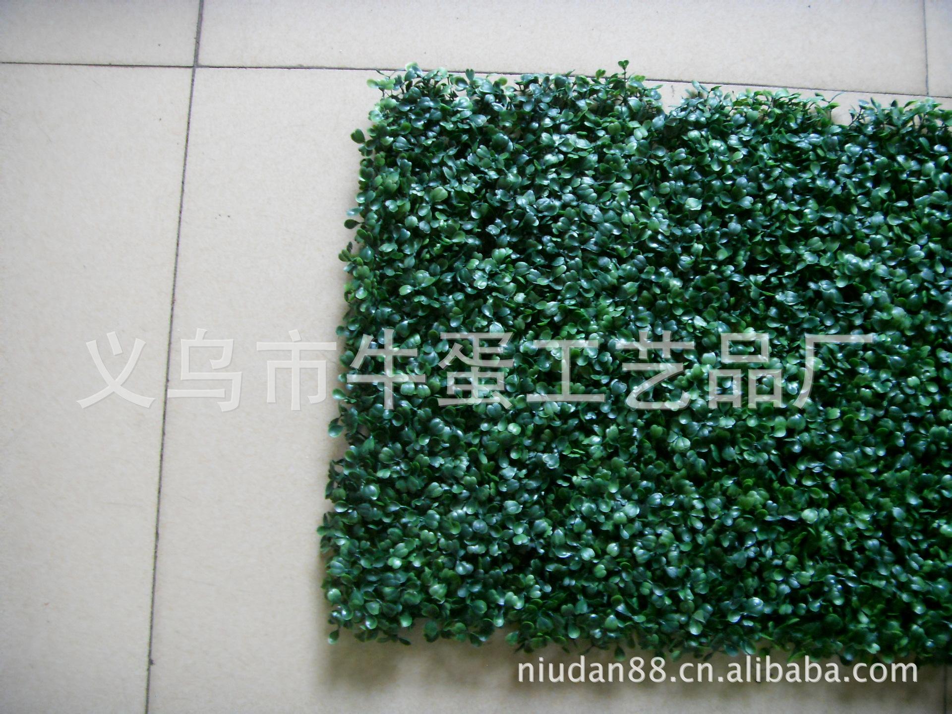 皮人造草皮米兰瓜子草皮图片,供应批发塑料仿真草坪假草皮人造草