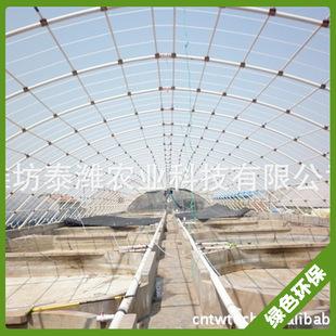供应日光温室花卉连体大朋 钢塑复合连体大棚厂家直销 质量保证