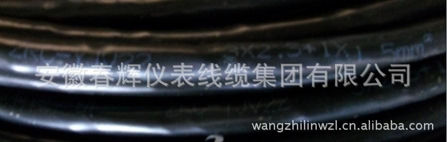 ZRC-YJV223-2.5标记