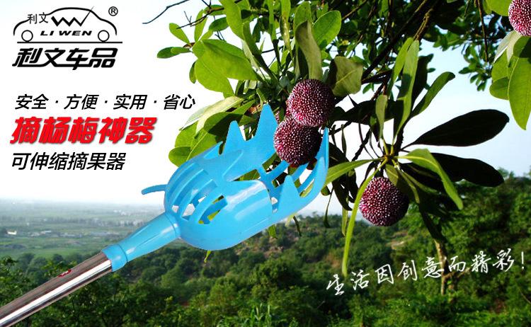 摘杨梅必备摘果器 摘水果工具 采摘神器 可伸缩调节摘杨梅