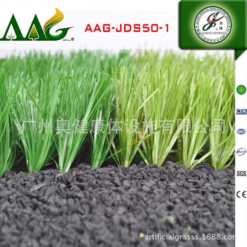 AAG-JDS50(2)
