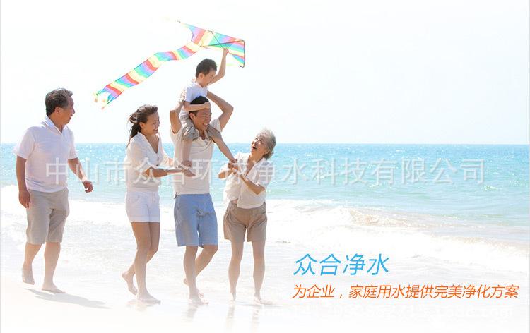 ZH-003三龙头直饮机商务不锈钢节能饮水机直过滤净水机品牌