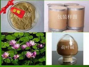 荷叶碱2%-98%陕西工厂出厂价直售