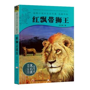 沈石溪动物小说系列  红飘带狮王