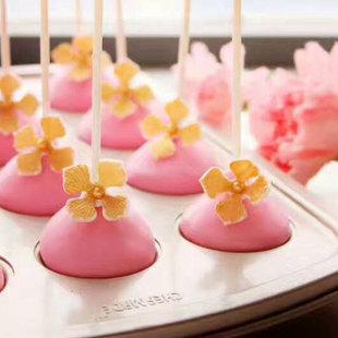 chefmade学厨 烘焙模具圆形DIY棒棒糖巧克力蛋糕模具配纸棒WK9213