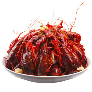 洪湖十三香麻辣小龙虾1kg(净虾500g+配料500g)(15只)7-9钱大虾