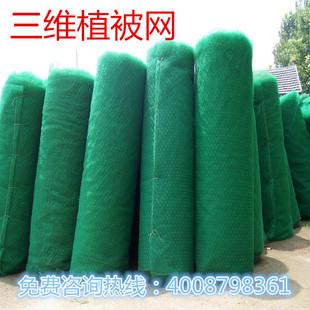 三维植被护坡网园林绿化网三维土工网垫三维护植草坡网